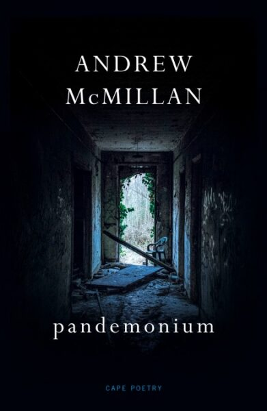Andrew McMillan pandemonium cover