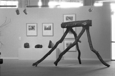 David Nash: Return to the Forest at Grizedale Forest